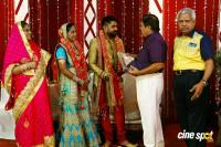 Tamil Film Producer Council Ec Member Gafar's Son Marriage Reception (13)