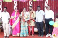 Tamil Film Producer Council Ec Member Gafar's Son Marriage Reception (22)