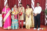 Tamil Film Producer Council Ec Member Gafar's Son Marriage Reception (30)