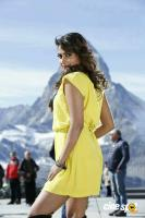 Amala Paul in Hebbuli (2)