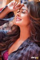 Payal Rajput Photoshoot (10)