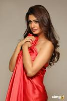 Payal Rajput Photoshoot (6)