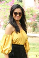 Gayathrie Shankar at Oru Nalla Naal Paathu Solren Press Meet (2)