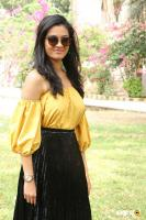 Gayathrie Shankar at Oru Nalla Naal Paathu Solren Press Meet (3)