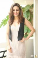 Seerat Kapoor Latest Images (1)