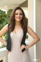 Seerat Kapoor Latest Images (10)