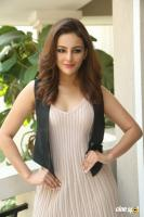 Seerat Kapoor Latest Images (12)