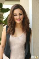 Seerat Kapoor Latest Images (14)