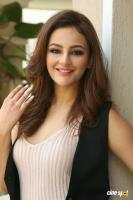 Seerat Kapoor Latest Images (16)