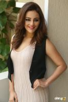 Seerat Kapoor Latest Images (17)