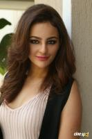 Seerat Kapoor Latest Images (20)