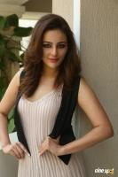 Seerat Kapoor Latest Images (21)