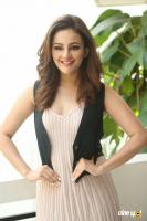 Seerat Kapoor Latest Images (22)
