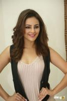 Seerat Kapoor Latest Images (31)