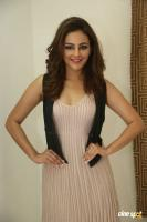 Seerat Kapoor Latest Images (32)