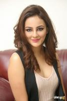Seerat Kapoor Latest Images (50)