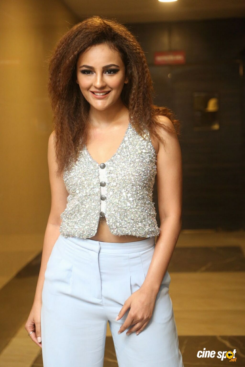 Seerat  Kapoor at Touch Chesi Chudu Pre Release Event (16)