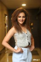 Seerat  Kapoor at Touch Chesi Chudu Pre Release Event (19)