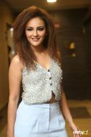 Seerat  Kapoor at Touch Chesi Chudu Pre Release Event (20)