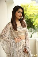 Toli Prema Heroine Raashi Khanna Interview Photos (5)
