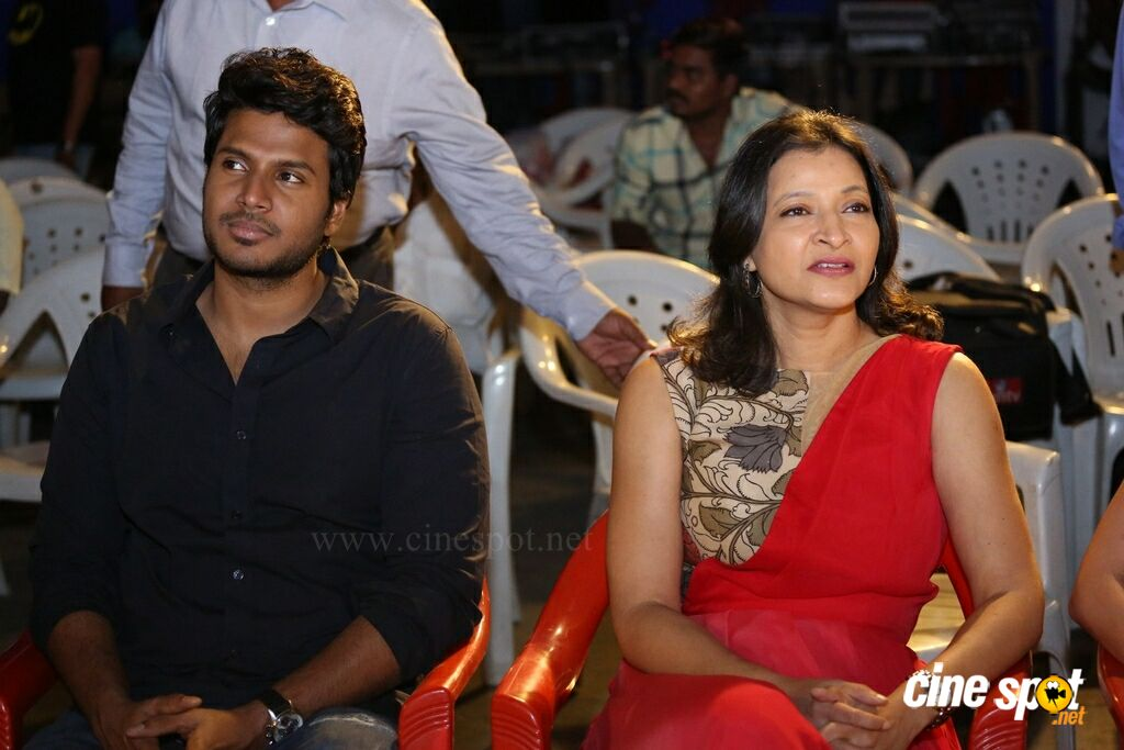 Manasuku Nachindi Audio Launch (10)