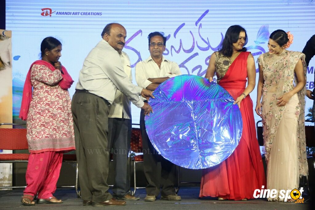 Manasuku Nachindi Audio Launch (15)