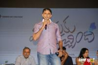 Manasuku Nachindi Audio Launch (31)