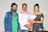 Seenugadi Prema Audio Launch (3)