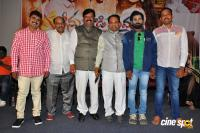 Seenugadi Prema Audio Launch (32)