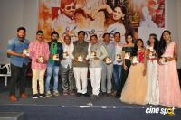 Seenugadi Prema Audio Launch (33)