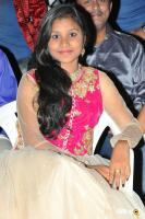 Seenugadi Prema Audio Launch (6)
