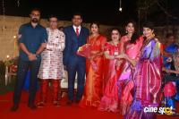 YG Harshavardhana Shwetha Wedding Reception (36)