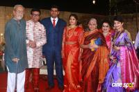 YG Harshavardhana Shwetha Wedding Reception (40)