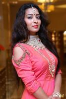 Bhanu Tripathi at Manepally Jewellers Wedding Festive Jewellery Collection Launch (11)