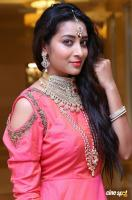 Bhanu Tripathi at Manepally Jewellers Wedding Festive Jewellery Collection Launch (4)