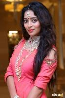 Bhanu Tripathi at Manepally Jewellers Wedding Festive Jewellery Collection Launch (7)