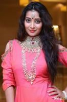 Bhanu Tripathi at Manepally Jewellers Wedding Festive Jewellery Collection Launch (8)