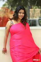 Geethanjali at Seelavathi Teaser Launch (3)