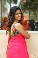 Geethanjali at Seelavathi Teaser Launch (6)