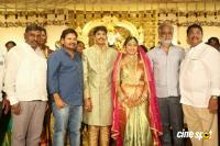 C Kalyan Son Teja & Naga Sree Wedding Reception Photos