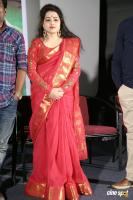 Ameerpet to America Trailer Launch (14)
