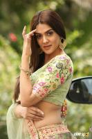 Sakshi Chaudhary at Oollo Pelliki Kukkala Hadavidi Audio Launch (8)