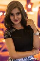 Anusha Rai Kannada Actress Photos