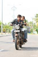Mos&cat Malayalam Movie Photos (1)