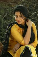 Sruthi Ramachandran in Chanakya Thanthram (3)