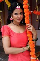 Parul Yadav at Butterfly Film Shooting Press Meet (3)