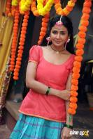 Parul Yadav at Butterfly Film Shooting Press Meet (5)