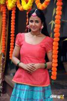Parul Yadav at Butterfly Film Shooting Press Meet (6)