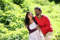 Rajavukku Check Tamil Movie Photos