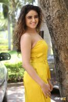 Sony Charishta at Mela Movie Teasar Launch (11)